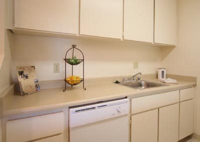 Aggie Square Apartment Kitchen