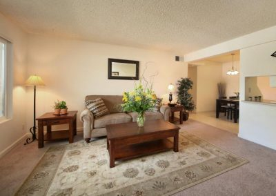 Aggie Square Apartment Living Room Image