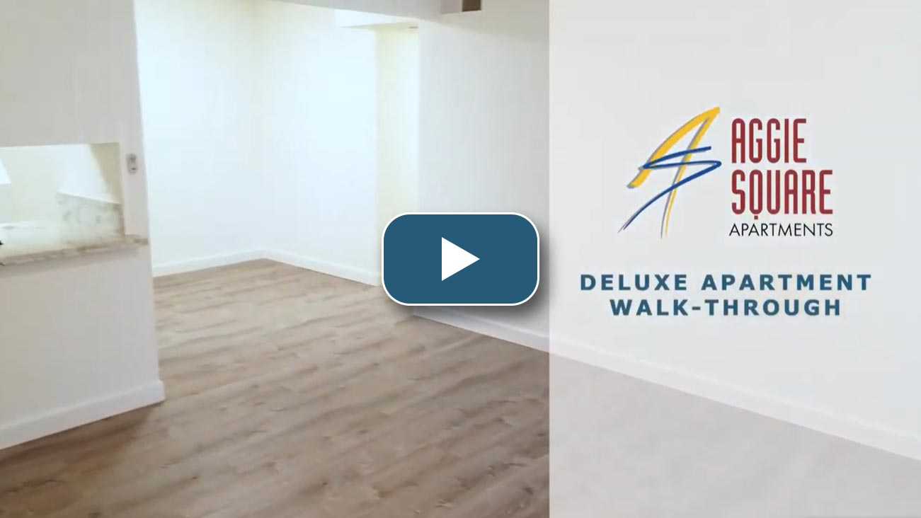 Aggie Square Video Dlx Apartment Walk-Through